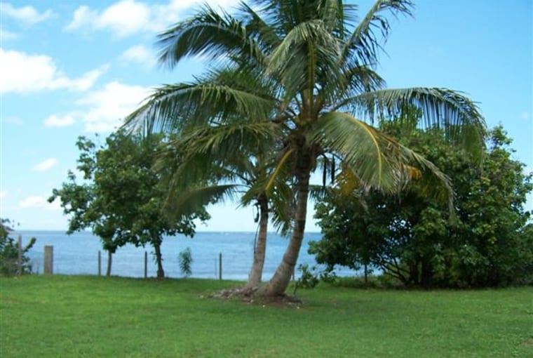 Long Haul Bay, Nevis - West Indies